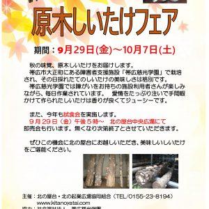 原木しいたけフェア開催します!