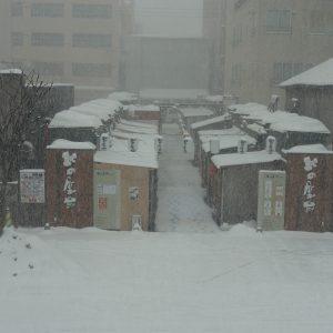 大雪警報発令中です